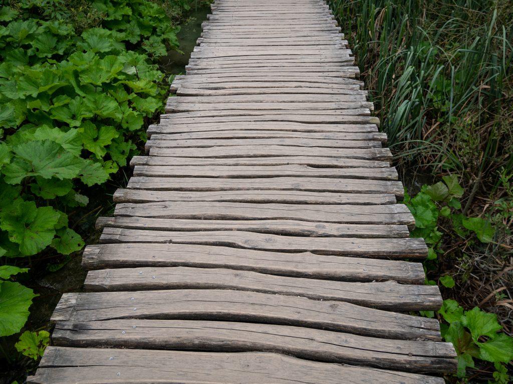 lacs_plitvice_chemin_bois