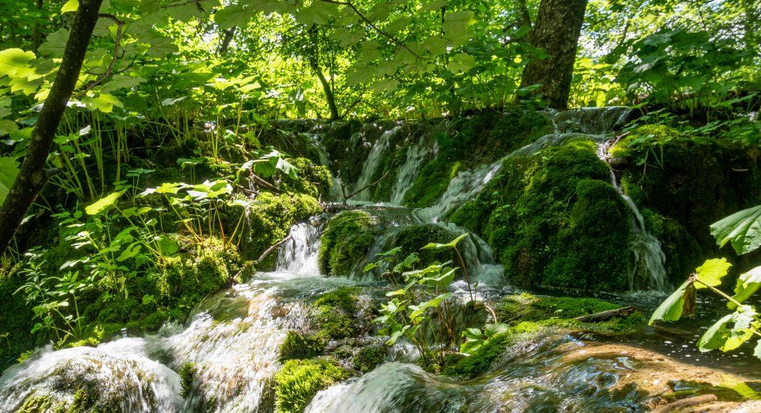 lacs_plitvice_eau_vert